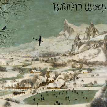 Birnam Wood cover art