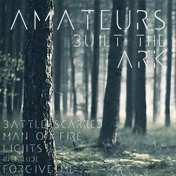 Amateurs Built The Ark cover art