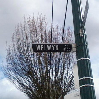 Welwyn Street cover art