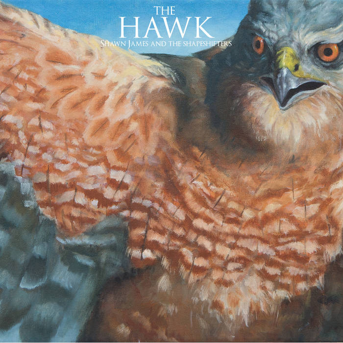 The Hawk cover art