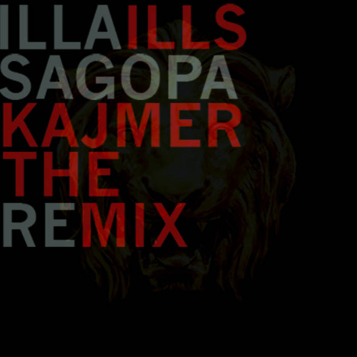 THE REMIX cover art