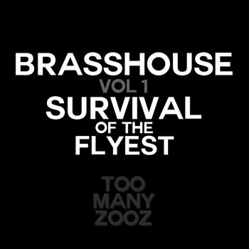 Brasshouse Volume 1: Survival of the Flyest cover art