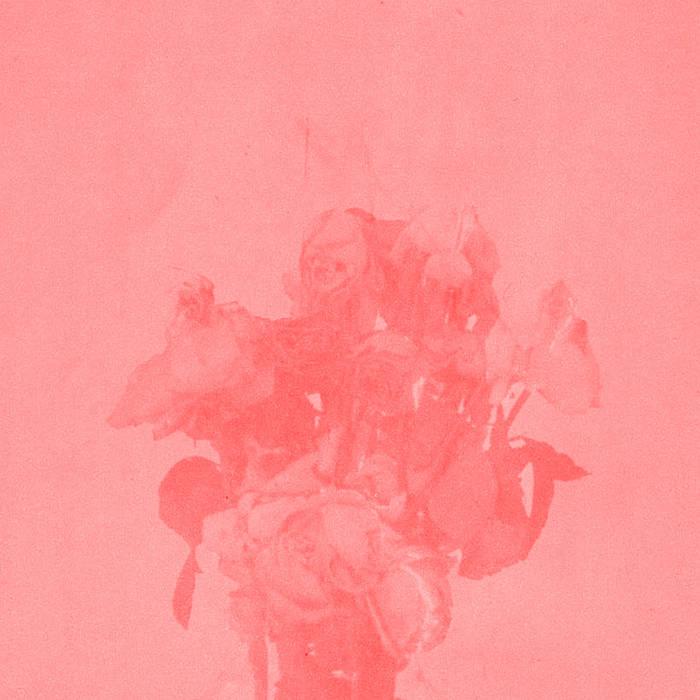 Sacred Flowers cover art