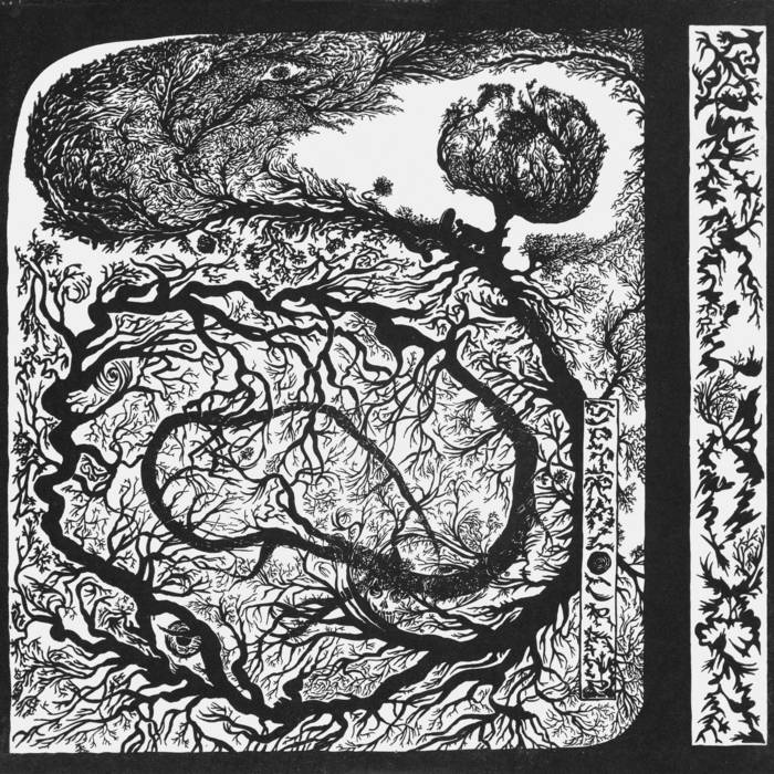 Spiral Cramp cover art