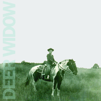Deer Widow cover art