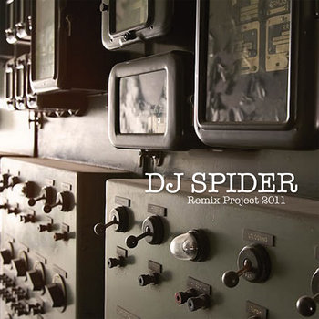 """Remix Project 2011"" - DJ Spider (CD SOLD OUT, digital now available) cover art"