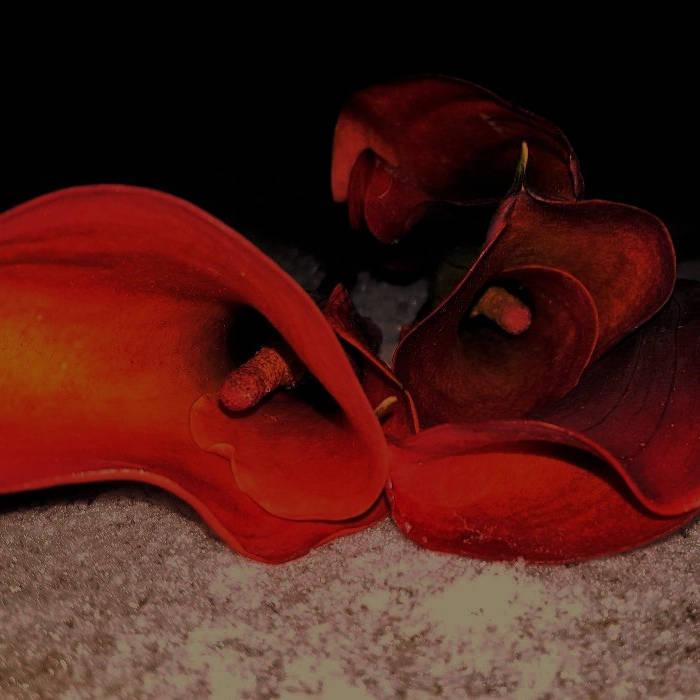 Heart's Desire cover art