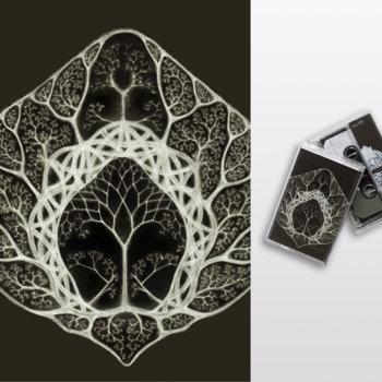 Split (sicsic020) cover art