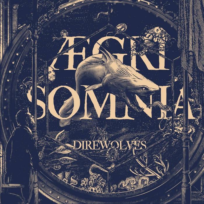 Aegri Somnia cover art