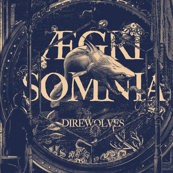 Aegri Somnia cover art