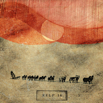 Kelp 16 cover art