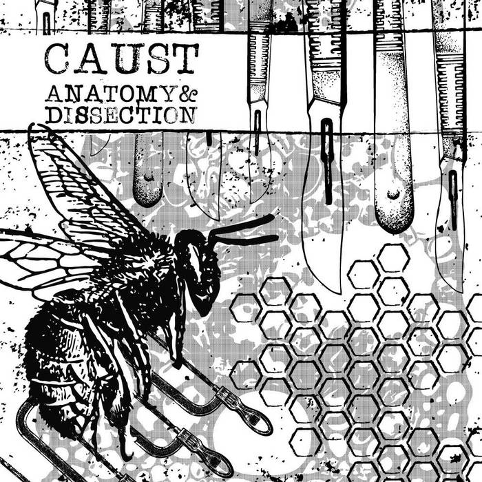Anatomy & Dissection cover art