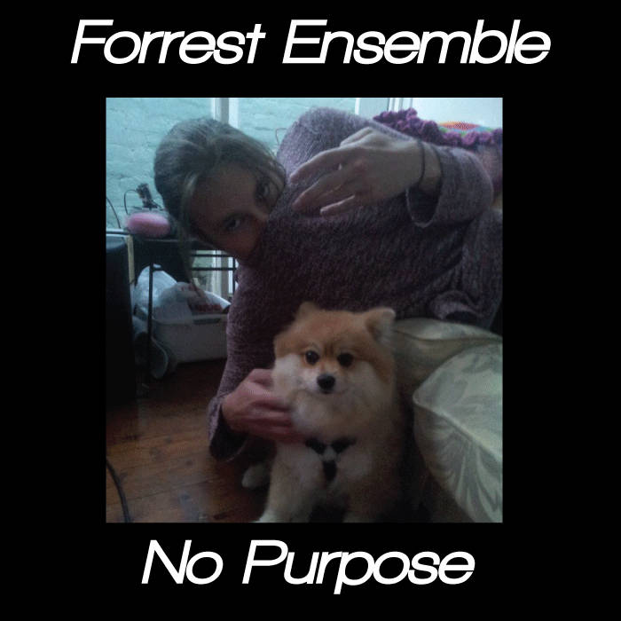 Forrest Ensemble - No Purpose cover art