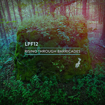 Rising Through Barricades cover art