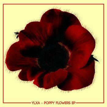 Poppy Flowers EP cover art