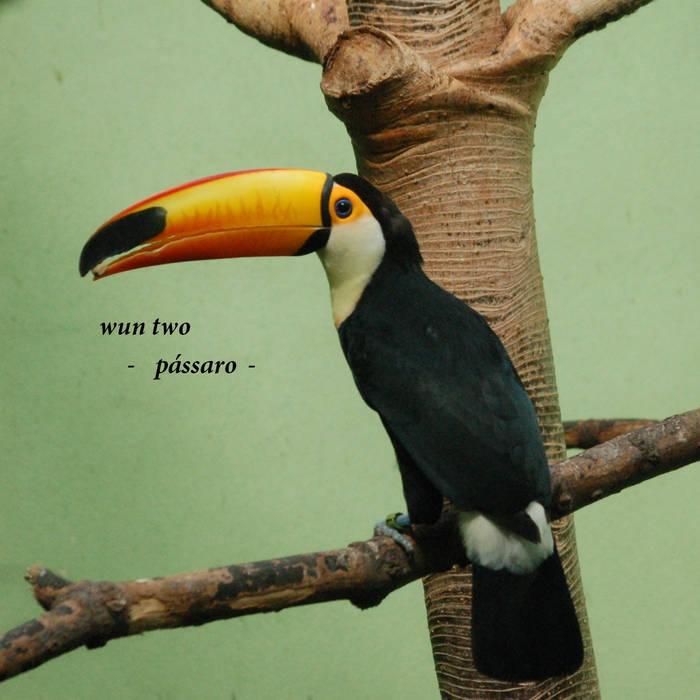 pássaro cover art