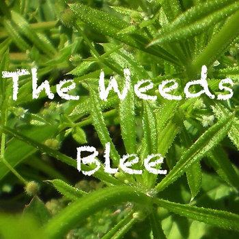 Blee cover art