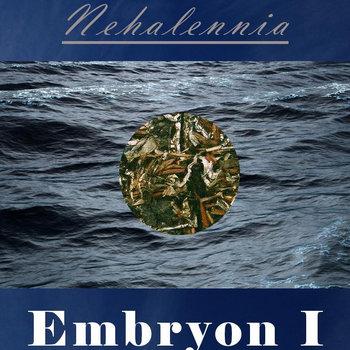 Nehalennia - Embryon I