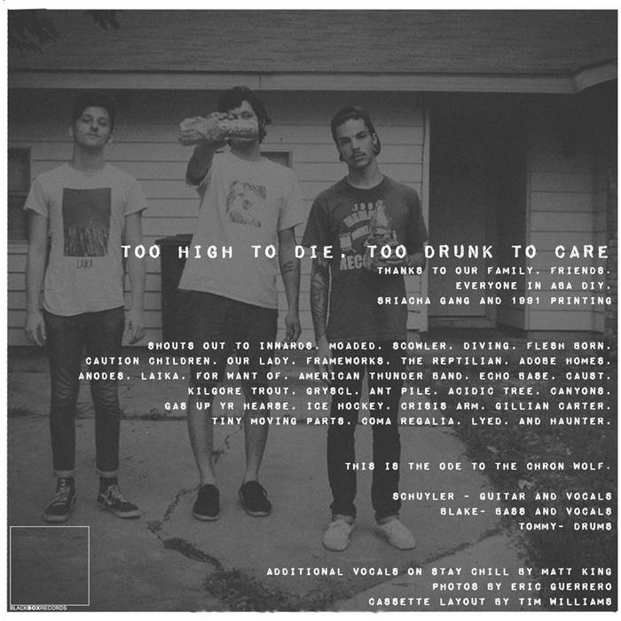 Too High to Die, Too Drunk to Care cover art