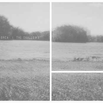 "The Shallows 7"" cover art"
