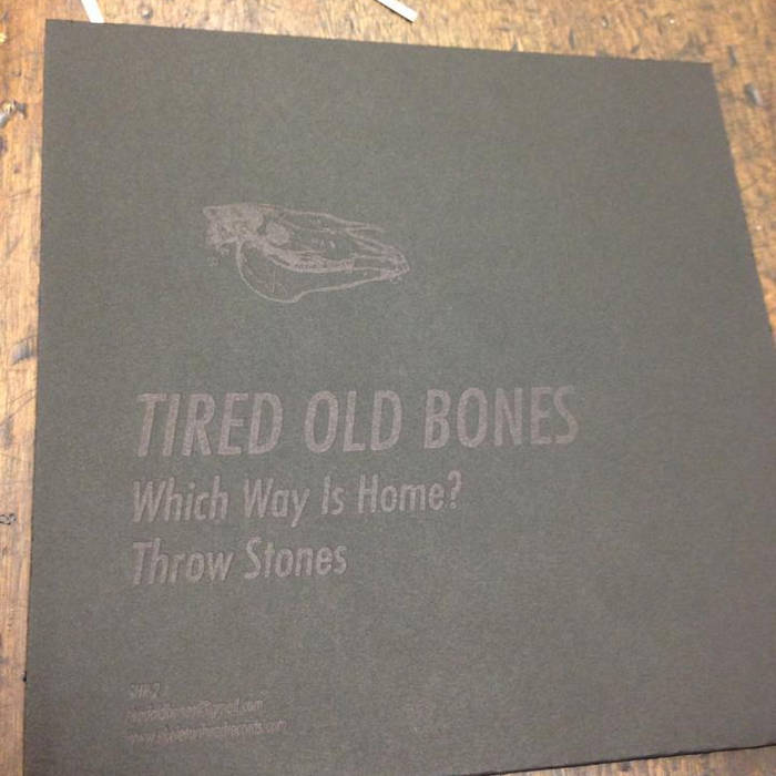 "Which Way Is Home?/ Throw Stones 7"" cover art"