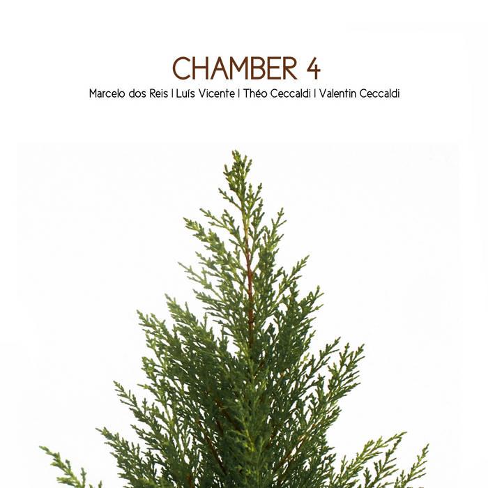 Chamber 4 cover art