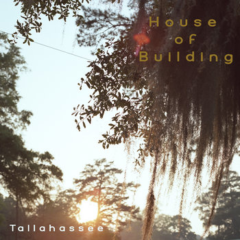 Tallahassee cover art