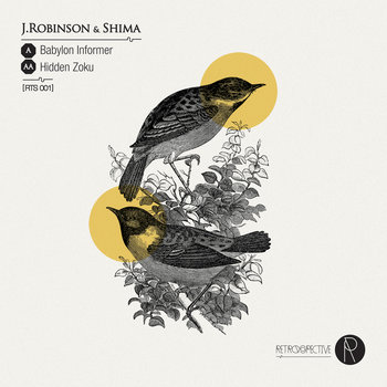 Babylon Informer / Hidden Zoku cover art