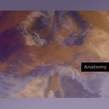 Anatomy cover art