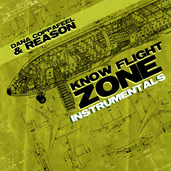 Know Flight Zone Instrumentals cover art