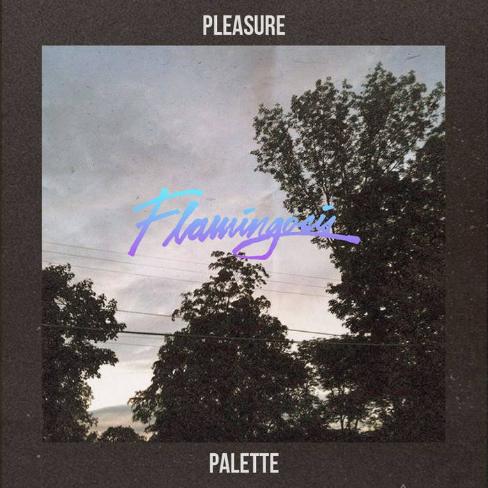 Pleasure Palette cover art