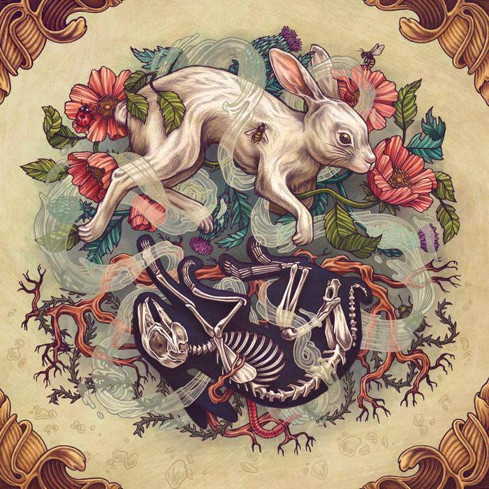 Dust Bunny cover art