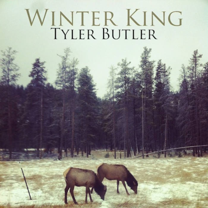 Winter King cover art