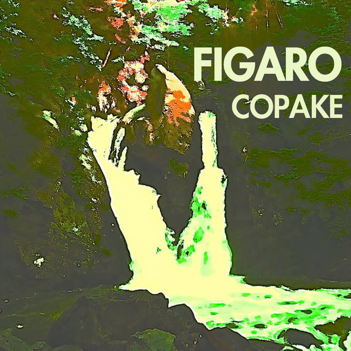 Copake cover art