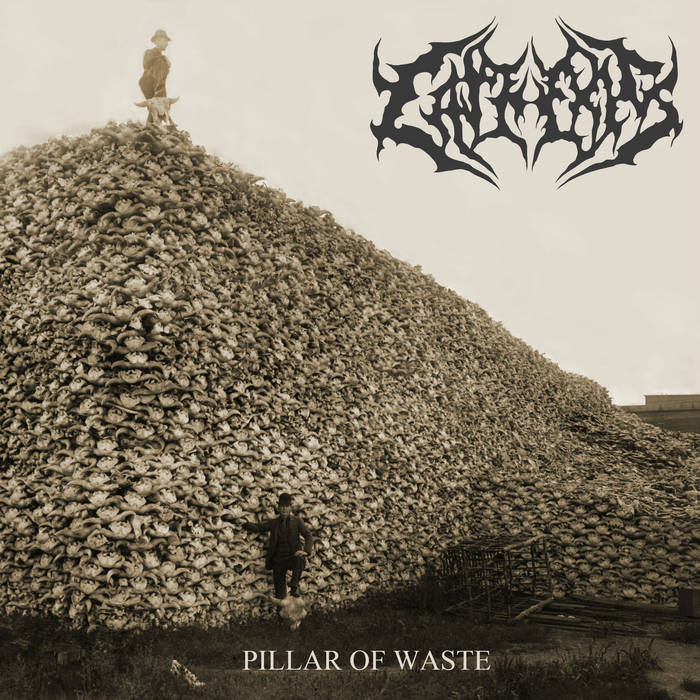 Pillar of Waste cover art