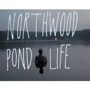 Pond Life cover art