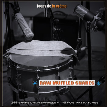 RAW MUFFLED SNARES cover art