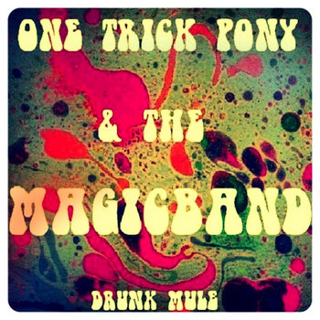 One Trick Pony & The Magic Band cover art