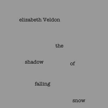 the shadow of falling snow cover art