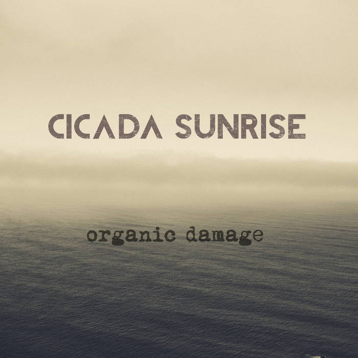 Organic Damage cover art