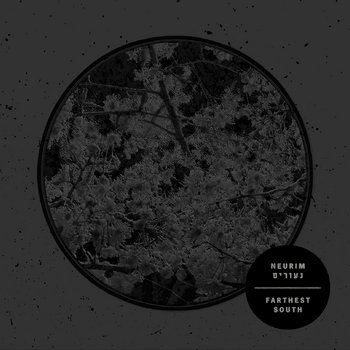 Neurim | נעורים cover art