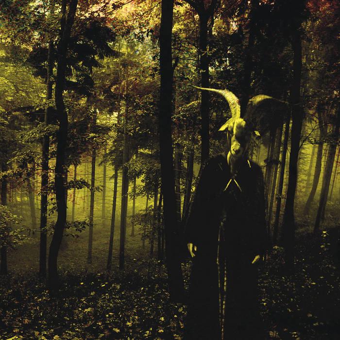Devotional Hymns (2010) cover art