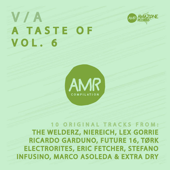 """ A Taste of vol 6 "" compil ( The Welderz, Niereich, Lex Gorrie, Ricardo Garduno & ...) cover art"