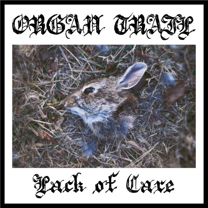 LACK OF CARE DEMO cover art
