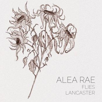 Flies & Lancaster cover art