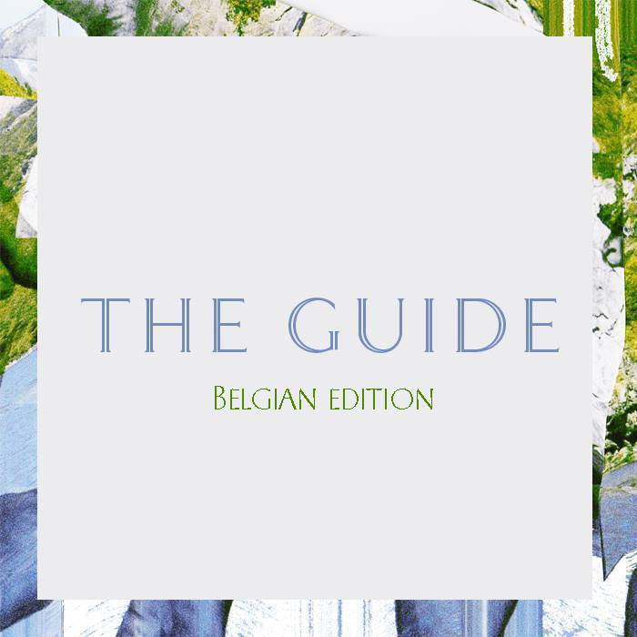 VA - The Guide (Belgian edition) (2016)
