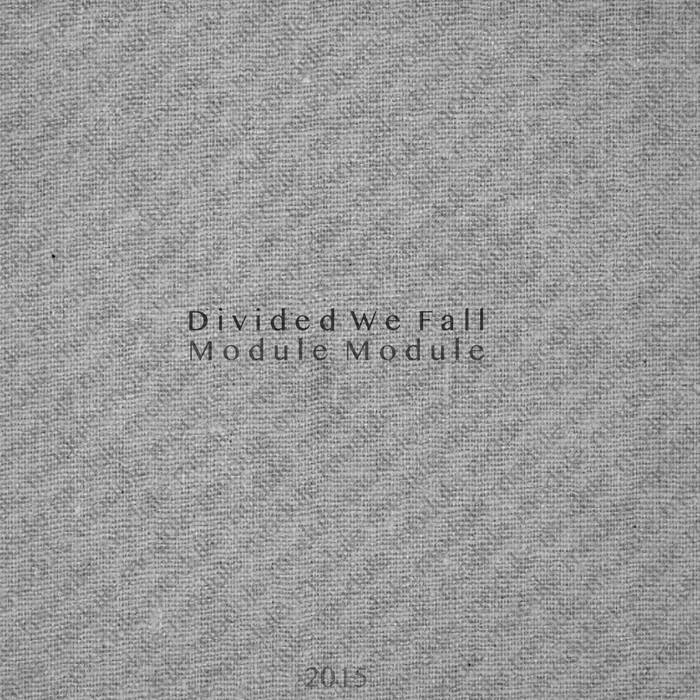 Divided We Fall (Vignette) cover art
