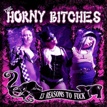 13 reasons to fuck cover art