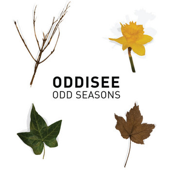 Odd Seasons cover art