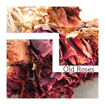 OLD ROSES [EP] (2 of 3) cover art